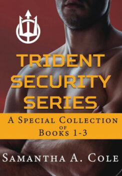 Trident Security Series: A Special Collection of Books 1-3