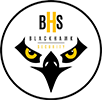 Blackhawk Security Logo